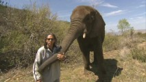 "Elephant expert Hayden Rosenaur provides a bit ""Elephant Fun"" on location."