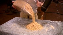 "Pouring cornmeal became a major part of the foley ant sounds, one of several things we learn in ""Adventures in Post-Production."""