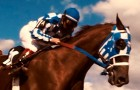 Secretariat Blu-ray + DVD Review