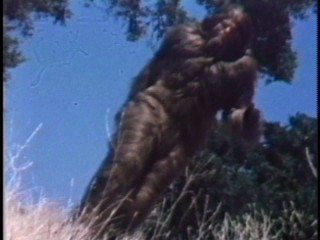"BAYABAA! You know Bigfoot (Ray Young) means business when the camera tilts for his slow-motion, crotch-centering Six Million Dollar Man run in ""Bigfoot and Wildboy."""