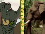 "An elephant from the movie is compared to the real thing in ""DisneyPedia: Junglemania!"", easily the best bonus in the kiddie section."