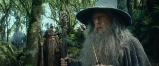 The wizard Gandalf (Ian McKellen) lends his wisdom and power to the mission.