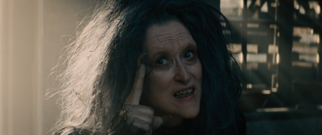 Meryl Streep earned her record nineteenth Academy Award acting nomination for her supporting performance as the Witch.
