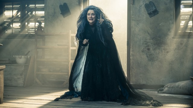 """Into the Woods"" stars Meryl Streep as The Witch, who has placed an infertility spell on the married couple next door."