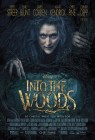 Into the Woods (2014) movie poster
