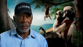 Narrator Morgan Freeman may not appear in the movie, but his on-camera comment is used in the first two bonus features.