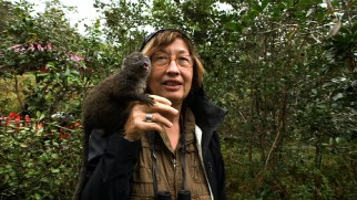 "Primatologist Patricia Wright proudly displays a bamboo lemur, ""The Cutest Lemur"" according to the bonus short's title."