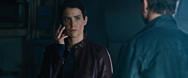"Cobie Smulders of television's ""How I Met Your Mother"" is asked to replace Rosamund Pike, Robert Duvall, Richard Jenkins, David Oyelowo, Werner Herzog and others as Tom Cruise's only co-star of note in ""Jack Reacher: Never Go Back."""