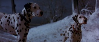 Pongo and Perdita take a moment to think in the snow as they approach an electrified fence.