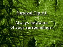 "One of many survival tips the characters in ""Lake Placid 2"" should have adhered to."