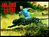 "Marketing art for ""Island Cats!"", found in the Designs gallery, shows Steve running in the wild."