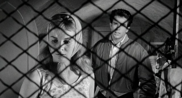 Occupational therapist Vincent Bruce (Warren Beatty) takes special interest in Lilith (Jean Seberg), the troubled young woman from whom this 1964 film takes its title.