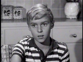 "Dennis the Menace (Jay North) makes life difficult for three couples in ""Dennis, The Confused Cupid."