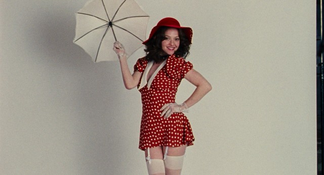 "The 2013 biopic ""Lovelace"" casts Amanda Seyfried as iconic adult film actress Linda Lovelace."