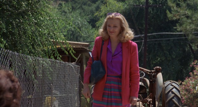 At an animal shelter, Sarah Lawson (Gena Rowlands) looks for the right pet to open her brother's heart.