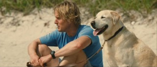 John (Owen Wilson) and Marley take a much-needed beach break from the pressures of home.