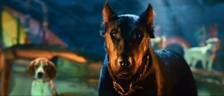 Some viewers may find it a bit racialist that they always have to make a black dog (like Bosco the Beauceron) be the villain.