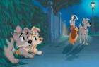 "Scamp and Angel (left) are sort of like Lady and Tramp (right) in the 2001 sequel ""Lady and the Tramp II: Scamp's Adventure"", which returns to DVD on June 20th. Click for more information."