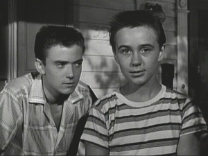 "Tim Considine and Tommy Kirk are the dapper adolescent detectives The Hardy Boys, who introduce you to their ""Mystery of Ghost Farm"" serial in the DVD's first episode."