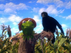 Our old friend Kermit has been reduced to trembling at the sight of crows.