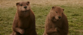 The Beavers (voiced by Ray Winstone and Dawn French) are two of Narnia's most likable characters.
