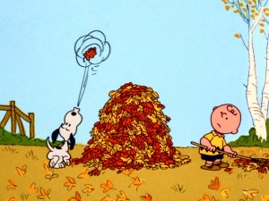 "Snoopy helps Charlie Brown with his autumn raking by blowing a single leaf onto his owner's big pile of fall leaves in ""It's the Great Pumpkin."""