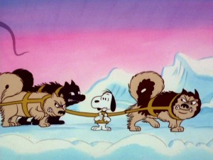 One of these dogs is not like the others. Snoopy enjoys neither the life of a sled dog nor the company of huskies in his pizza-fueled arctic nightmare.