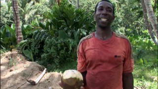 Astute menu navigating skills are rewarded with an introduction to The Coconut Man!