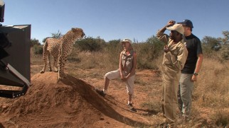 Off-camera, an animal trainer gets a desired reaction from a cheetah in the Namibia making-of featurette.