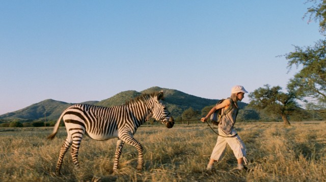 For Jana, Africa's magic includes an easily befriended and led zebra.