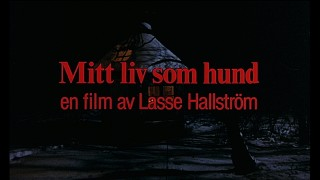 "The title and director are acknowledged in this dark closing shot from Sweden's original ""My Life as a Dog"" theatrical trailer."