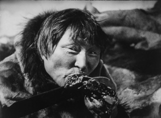 Essay On Nanook Of The North