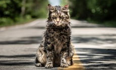 Pet Sematary (2019) film review