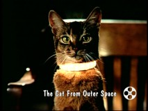 """The Cat from Outer Space"" is one of Disney's 1978 properties remembered in the year's Disney Studio Album."