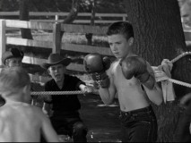 It's every boy's nightmare...Spin Evans in boxing gloves!