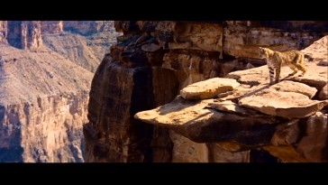 Be careful, kitty. A wild cat looks out over the Grand Canyon in Disney's Oscar-winning short.