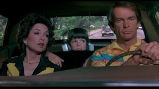 "In ""The Shaggy D.A."", Dean Jones and Suzanne Pleshette again play a married couple. This time, though, instead of a Great Dane and four dachshunds, they have a somewhat bratty son."