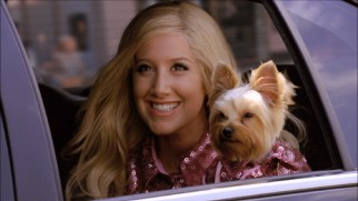 Sharpay Evans (Ashley Tisdale) and her dog Boi head to New York City in matching pink outfits.