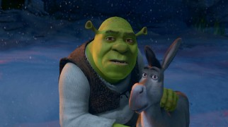 After months of disregarding Donkey's counting down, Shrek is finally ready to prepare for Christmas.