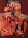 "The Complete First Season DVD treats ""Silver Spoons"" to three different composite covers."