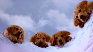 Budderball (Josh Flitter), Rosebud (Liliana Mumy), B-Dawg (Skyler Gisondo), and Buddha (Jimmy Bennett) watch as Mudbud (Henry Hodges) desperately digs a hole in the snow in search for mud.