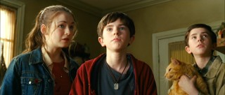 Sarah Bolger, Freddie Highmore, an orange cat, and Freddie Highmore look around the room with feeling.