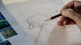 "Michael Dudok de Wit demonstrates how to draw a turtle in ""The Secrets of 'The Red Turtle.'"""