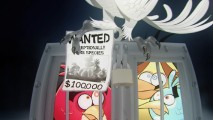 "The Angry Birds live up to their name, when caged in ""Nigel Mashup."""