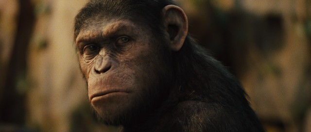 The stunning result of motion capture performance and computer animation, Caesar (Andy Serkis) quickly emerges as one of the most poignant animals in cinema history.