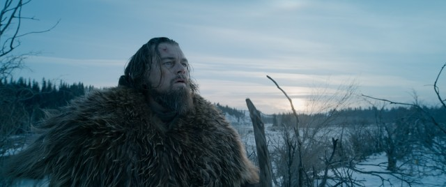 "Leonardo DiCaprio is poised to dominate the season's Best Actor awards for his grueling work in ""The Revenant."""