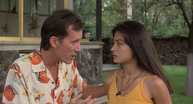 Richard Boyle (James Woods) is determined to acquire identification papers for the safety of his girlfriend Maria (Elpidia Carrillo).