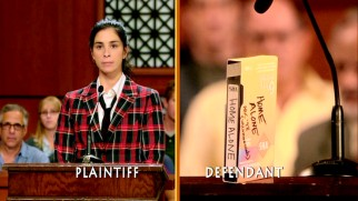 "After a prank goes wrong, Sarah Silverman sues ""Home Alone"", represented by her television recording of it."