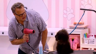 "Eric Stonestreet blow-dries a dog in ""Hairstylist to the Dogs."""