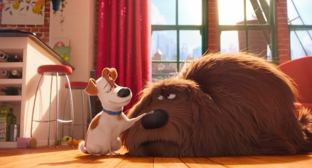 "Max tries to patronize his new roommate Duke in ""The Secret Life of Pets."""